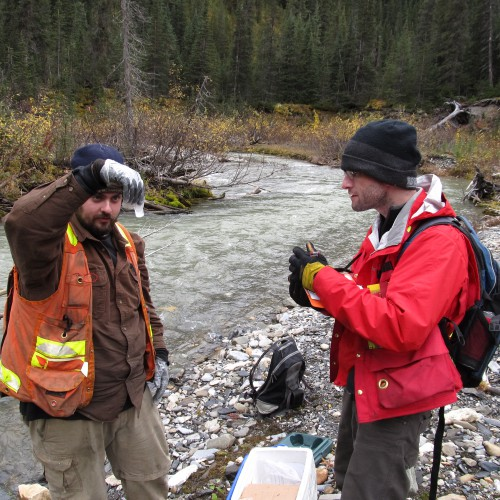Water sampling along Silver Creek in 2011